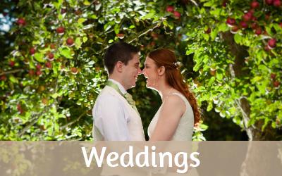 Weddings button